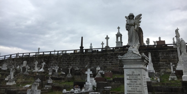Waverley Cemetery lostlara.com